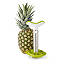 Pineapple Slicer 2 thumbnail