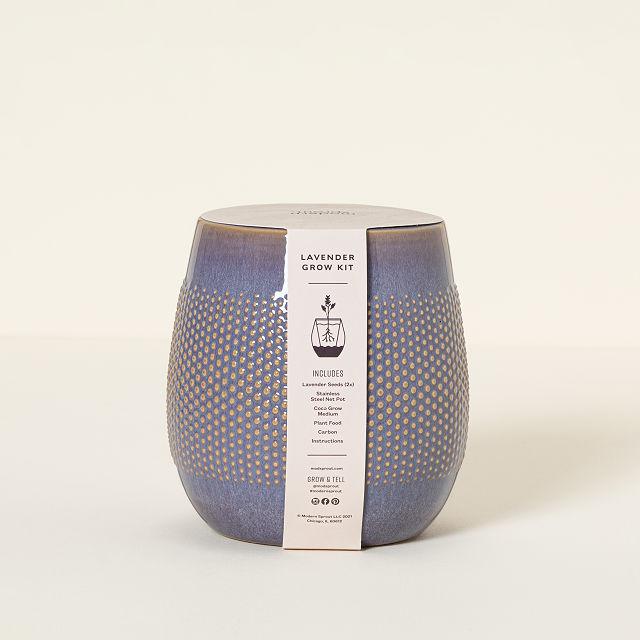 Self-Watering Lavender Grow Kit