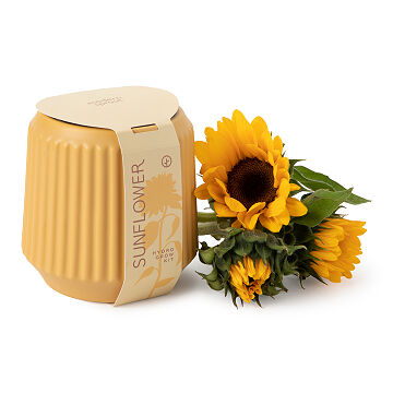 Sunflower Gifts Uncommon Goods
