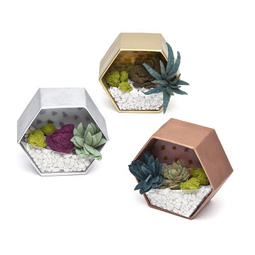 Unique Funky Gardening Gifts Uncommon Goods