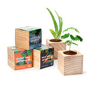 Tropical Trio Grow Set