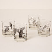 Birds Of Prey Rocks Glass Set