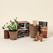 Organic Salsa Grow Kit
