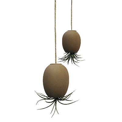 HANGING AIR PLANT POD