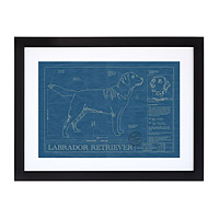 Large Dog Blueprints