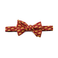 BICYCLES BOW TIE