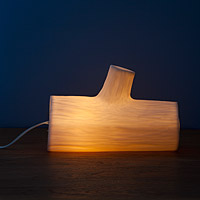 Glowing Log Lamp