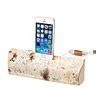 Birch iPhone Charging Dock