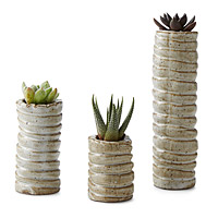 Succulent Starter Planters - Set of 3